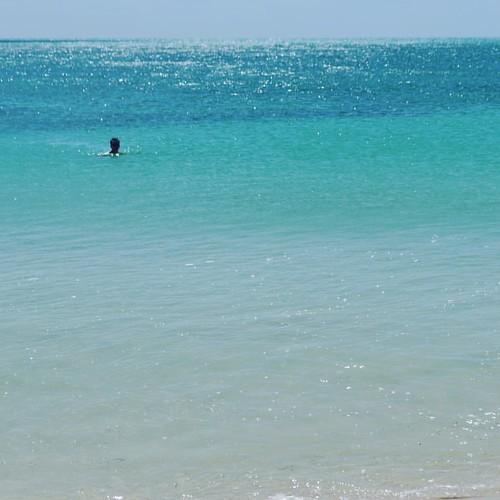 Taking a swim at Bahia Honda State Park #bahiahonda #floridakeys #overseashighway #florida #miami #usa