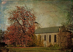 The Forgotten Church On The Chestnut Tree (Harald52) Tags: kastanienbaum kirche texturen