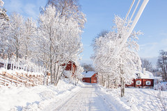 Beautiful winter day. (BirgittaSjostedt- away for a while.) Tags: winter house village road tree fence sun cold beauty birgittasjostedt snow landscape outdoor ie