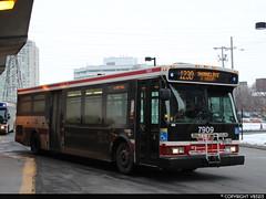 Toronto Transit Commission #7909 (vb5215's Transportation Gallery) Tags: ttc toronto transit commission 2006 orion vii