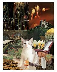 Sagittarius - StarCat (tjager) Tags: astrology zodiac starcat sagittarius livingferal cat firesign catlover fireworks art collage analog