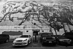 314/366 (local paparazzi (isthmusportrait.com)) Tags: 366project canon5dmarkii tokina1628f28 zoom lopaps pod 2016 iso800 redskyrocketman localpaparazzi isthmusportrait losangelescalifornia lacounty losangeles tokina 1628 f28 black white contrast blackandwhite blanco negro blancoynegro streetart graffiti art interesting inspirational inspiring parking parked parkinglot cars outdoors lax la cali f45 sharpness detail clarity raw cr2 canonraw photoshopelements7 downtown dtla