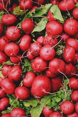 Farmers Market (nateblais) Tags: food vsco vegetables veggies pretty colorful radish radishes