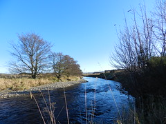 River Deveron, near Huntly, Aberdeenshire, Nov 2016 (allanmaciver) Tags: river deveron huntly aberdeenshire blue weather low view chilly trees curve winding allanmaciver