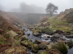 NB-1.jpg (neil.bulman) Tags: countryside longshawestate peakdistrict nature nationalpark derbyshire longshaw fog nationaltrust sheffield england unitedkingdom gb