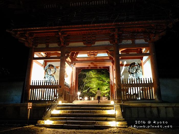 2016醍醐寺夜楓1.JPG