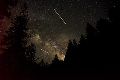 strasssa (Alyx Shea) Tags: california longexposure stars nikon astrophotography redwoods d600
