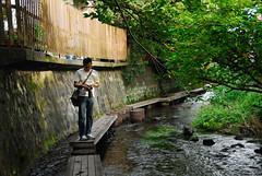 源兵衛川散策 (Takechan-400) Tags: japan shizuoka springwater mishima 静岡県 湧水 三島市 源兵衛川 fdsc0016 富士の湧水 バナジウム 芝本町