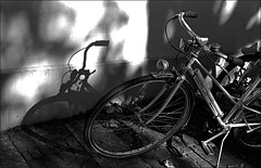bike and its shadow (manni39) Tags: film me bike bicycle shadows pentax agfa mainz schatten apx fahrrad ombres biciclette agfaapx100 pentaxme r09 selfdevelopped pentax50mm20
