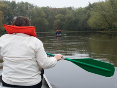 Along Cynthia Slough (Jonathan Lurie) Tags: green fog wisconsin river spring october unitedstates paddle canoe cynthia slough wisconsinriver springgreen cynthiaslough