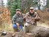 New Mexico Elk Hunt 65
