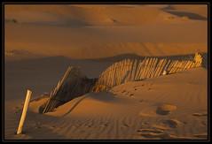 Morning glow (Ciao Anita!) Tags: friends sunrise desert alba morocco marocco sanddunes marokko deserto merzouga woestijn ergchebbi zonsopkomst dunedisabbia zandduinen meknèstafilalet theperfectphotographer fotoworkshopnl