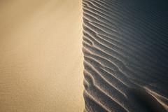 1/2 (Kash Khastoui) Tags: sunset sand dunes australia nsw half 5d shire simple sutherland peninsula cronulla kash kurnell khashayar khastoui