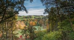 Later that autumn…. (markhortonphotography) Tags: autumn canon woods view arboretum lookout surrey 7d observationplatform nationaltrust winkworth winkwortharboretum surreyhills eos7d 1585mm