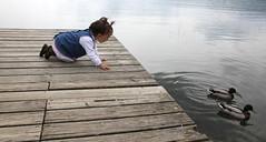 IMG_7967 (Pedro Montesinos Nieto) Tags: lake landscape ducks aves nios girona fragile catalua patos ageofinnocence briidge lagodebaolas laedaddelainocencia estanydebanyoles frgiles lakesintheworld cataluaturistica lagosdeespaa