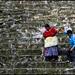 Bajando una pirámide en Yaxhá