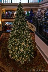 Empress Tree (Ataman Photography) Tags: christmas canada tree holidays bc britishcolumbia victoria vancouverisland empress fairmont greatervictoria greatervictoriaregion