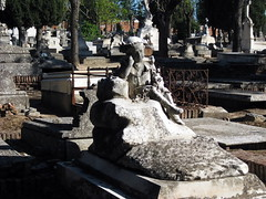 Cementerio de Nuestra Sra de la Almudena 1875-1925 Madrid (18) (Ruben Juan) Tags: madrid espaa cemetery grave canon spain espanha almudena lapida cementerio tumba mausoleum cruz gravestone cenotaph nicho grab fosa espagne tombs tomba spanien spagna spanje sepultura spania mausoleums sepulcro fossa madryt hiszpania mausole hrob funerario grb panlsko mausolu cnotaphe grobowiec cenotafio cementeriodelaalmudena mauzoleum funerarystatue artefuneraria kenotaph artfunraire artefunerario ixus80 grabkunst grabstatue kenotaf statuafuneraria statuefunraire cenotaphen pomnikgrobowy pohebnsocha sztukapogrzebowa