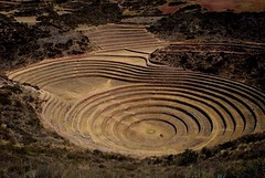#TheSCurve (El Oveja Negra) Tags: peru inca circles cusco terraces sacredvalley moray thescurve uploaded:by=flickrmobile flickriosapp:filter=nofilter