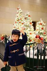Yeah! Xmas Tree (Shun Daddy) Tags: life christmas family baby zeiss 35mm hongkong prime kid child sony snapshot carl fe fullframe  za  ff f28 a7  sonnar    2013  mirrorless sonnart2835 sel35f28z