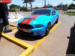 Ford Mustang Shelby GT 500 (Delfino Mattos) Tags: ford paran car brasil muscle coche shelby carro mustang v8 londrina gt500 automvel worldcars wwwldbmachinescombr