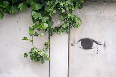 20140516 London eye (chromewaves) Tags: england london fuji britain united great may kingdom vale 16 2014 maida x100