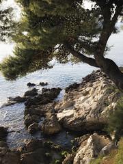 Dalmatian Coast 2 (icypics) Tags: landscape croatia coastal dubrovnik keeper