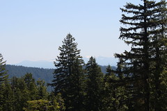 Smoke from the Two Bull Fire clouded the view (rozoneill) Tags: elephant oregon forest river butte head hiking trail national wilderness rogue siskiyou abbott cougar divide umpqua wsweekly88