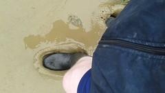 Dunlop wellies enjoying a muddy afternoon (essex_mud_explorer) Tags: mud boots wellingtonboots wellies gummistiefel wellingtons dunlop schlamm