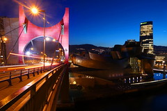 Guggenheim Bilbao (rubenmorandeira) Tags: longexposure lumix landscape largaexposición leica panasonic paisaje puente bilbao bridge night nocturna blue art brigth allnaturesparadise