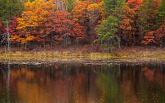 Reflecting on Fall (Zack Mensinger) Tags: minnesota fall fallcolors fallcolor 2016 canon5dmarkii 70200mmf4l canon70200f4l northernminnesota onlyinmn exploremn nature naturalbeauty northwoods