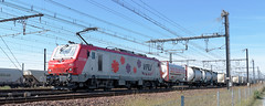 [FR-VFLI] BB 27114M (ex-Thionville) + Novatrans @LVaD 24 09 2016 DSC_4417_DxO (yael.flament1) Tags: prima alsthom alstom vfli locomotive voies ferres locales et industrielles france sncf prive ef novatrans 50722 bb27114m bb27000 bb27000m bb27114 bb 27000 27114