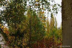 DSC_1388 (andrzej56urbanski) Tags: chernobyl czaes ukraine pripyat prypeć prypyat kyivskaoblast ua