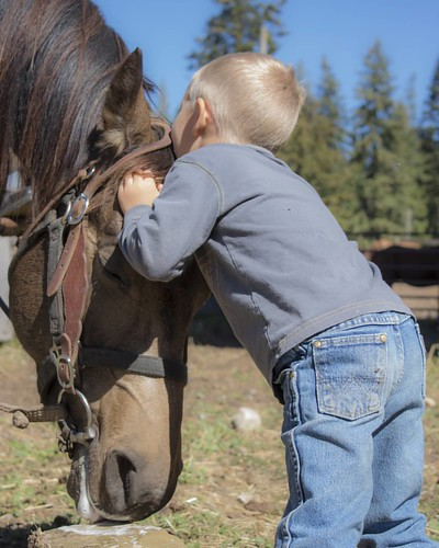 It doesn't get much cuter than a little cowboy loving on his horse.  #wpguestranch #guestranch #duderanch #cute #outdoorchild #kidsoutside #childrenofthemountains #childrenofmountains #ranchkids