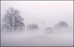 Lungo l' Adige (Raul-64) Tags: nebbia fog bassapadovana veneto casa paesaggio landscape