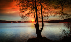 Sun (augustynbatko) Tags: sun nature lake sky clouds cloud water tree landscape view outdoor
