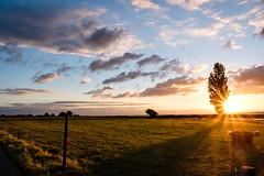 Mn (Ulrich J) Tags: himmel danmark solnedgang modlys landskab mn backlight denmark landscape mn sky sunset