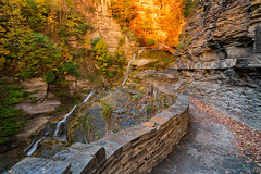 Treman State Park - Gorge Sunrise II (agladshtein) Tags: colors sony2470mmf28g cny landscape season nature newyork fall ny trees centralnewyork tompkinscounty tremanstatepark waterfall gorges forest scenic sonya7r2 outdoors luciferfalls traveldestination beautyinnature hiking ithaca sunrise dawn