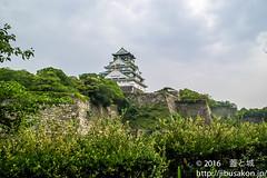 toyotomiishigakizenpen-8 (manhole_castle) Tags: