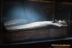 Silver Coffin (konde) Tags: silver 21stdynasty psusennesi thirdintermediateperiod anthropoid coffin tanis treasure art cairomuseum ancientegypt
