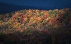 Last Light of Autumn (jasohill) Tags: autumn october landscape tohoku vibrant city 2016 iwate trees adventure travel photography life colors hachimantai color japan nature canoneos80d