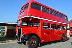 RLH23 MXX223 (PD3.) Tags: surrey lt transportfest transport fest 2016 london bus museum cobham hall weybridge trust brooklands rlh23 rlh 23 mxx223 mxx 223 aec regent weyman timebus