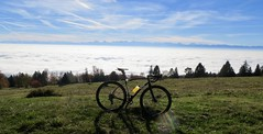 Catching Some Sun (collideous) Tags: fall autumn gravel grinding bike ride 29102016 fog alps blue sky