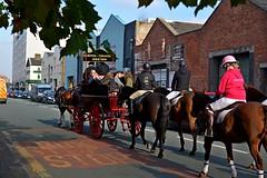 Heading towards the Coburg pub (napoleon666uk) Tags: liverpool international horse festival liverpoolinternationalhorsefestival horseshow echoarena animal parade