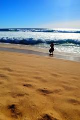 Castro de Baroña beach (Ripley1969) Tags: d90 galicia beach sea mar playa azul arena blue sand water agua atlantic atlántico océano ocean paisaje suft tabla niño chicos críos son hijo boy coruña baroña porto nikon