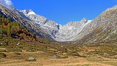 Val di Fumo - Adamello Presanella Alps (ab.130722jvkz) Tags: italy trentino alps easternalps adamellopresanellaalps mountains autumn