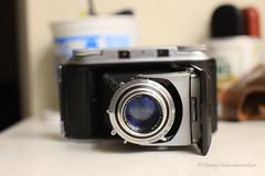 Would you look at that!! (dheeruparu) Tags: voigtlander bessa ii 6x9 medium format film color skopar 105mm 35 range finder