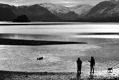 Reality poem (plot19) Tags: britain view blackandwhite british black blackwhite english england people dog tones nikon north northwest northern landscape love light lakedistrict lakes lake water plot19 photography