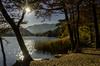 (robbar74) Tags: lagograndedimonticolo autunno natura appiano bolzano colori backlit controluce foliage bosco foglie fall trentinoaltoadige