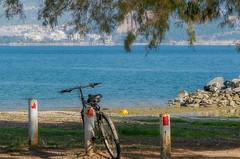 Old School Magic (Marios Krokidis) Tags: bicycle old volos greece trees sea seascapes landscape day ago beach pelion